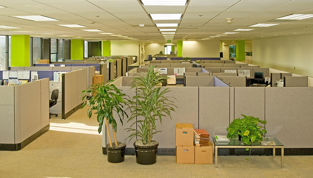 office cleaning cleaning club llc